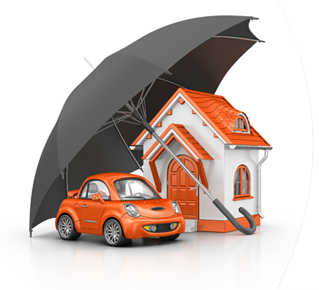 Palm Coast, FL Homeowners Insurance
